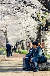 Chatting at Chidorigafuchi