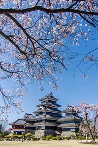 Sakura Castle Overhang