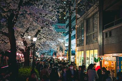 Crowds At Nakameguro, Tokyo
