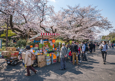 Ueno Cherry Blossom Vendor
