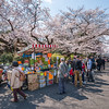 Ueno Cherry Blossom Vendor