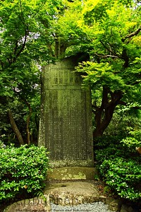 Japanese Grave in Forest