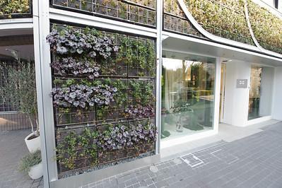 Vertical flowerbeds.