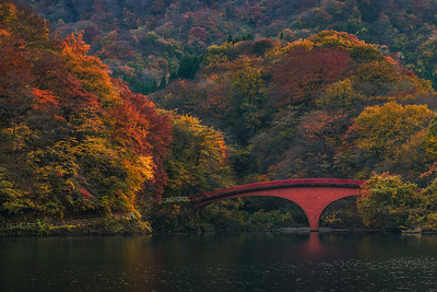 Autumn Colors On Lake Usui