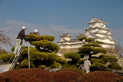 himeji-castle
