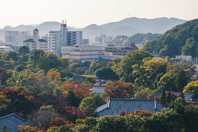 Himeji Castle View