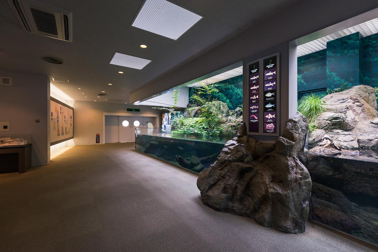 Kinosaki Onsen Marine World