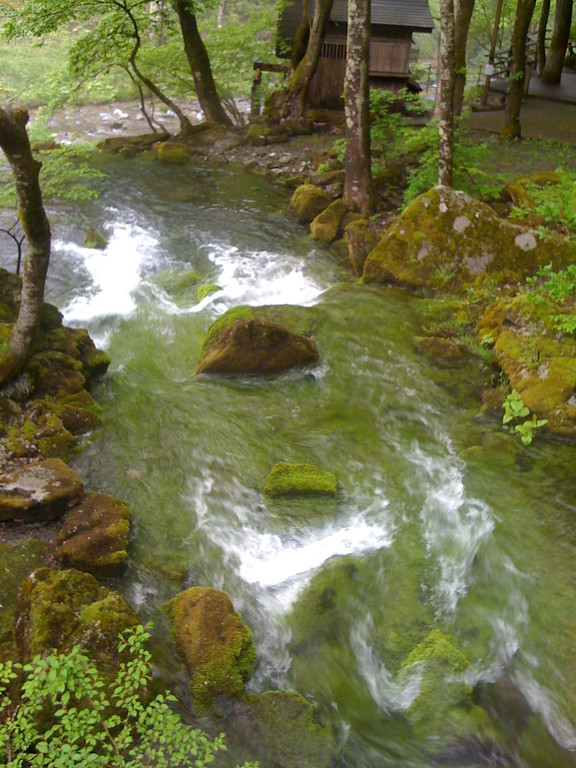 Natural stream coming from an undergound source