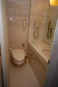 The bathroom includes a western toilet and what is either a hair dryer or a vacuum cleaner (maybe both)!
