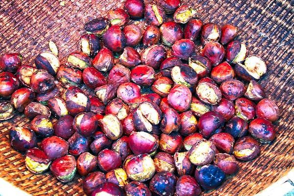 Fresh Roasted Chestnuts