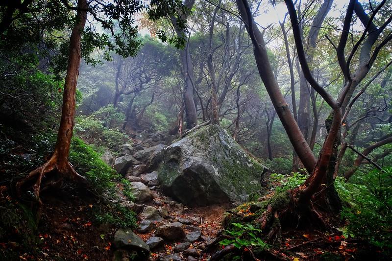 2014/10/23: Hiking from Owakudani to Mt Komagatake, Hakone.