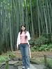 017 Moso Bamboo