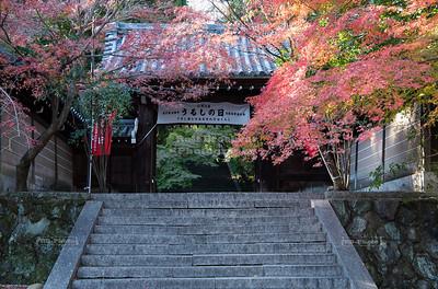 Horin-ji Temple, Arashiyama