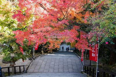Horin-ji Temple, Arashiyama, Kyoto