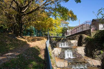 Anshoji River in Kyoto