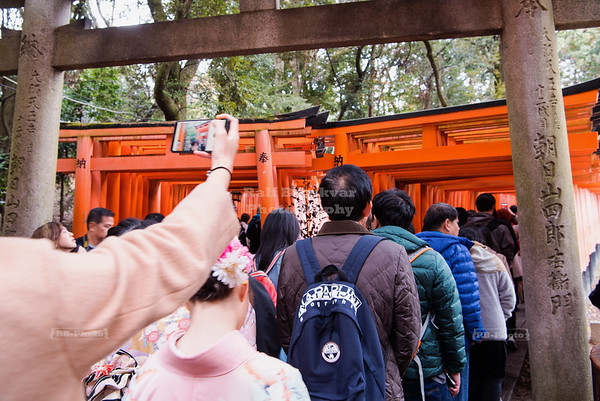 Torii gates - the other part of the picture