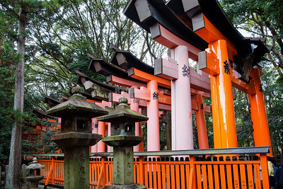 Torii gates at Fushimi Inari Taisha, Kyoto, Japan