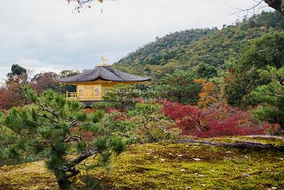 Back Side Of The Golden Pavilion