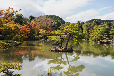 Kinkaku-ji Temple, Kyoto Japan