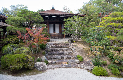 Garden at the Ninna-ji Temple, Kyoto