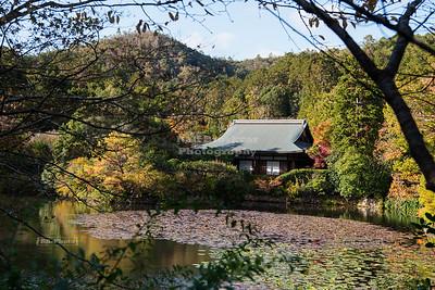 Ryoan-ji Temple Gardens Kyoto