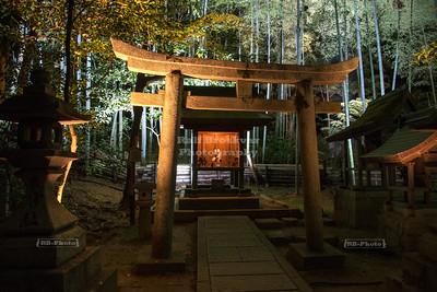 Shoren-in Temple Kyoto