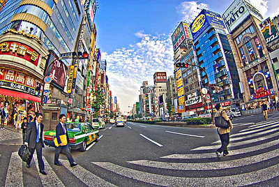 Kabukicho Crossing-4176web800