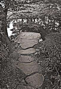 garden pond step stones-4005monoWeb800