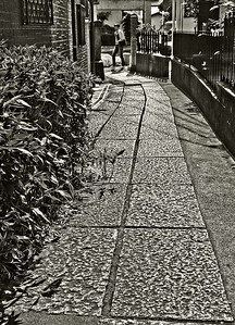 Paved path from a recessed Buddhist temple in Mita, Tokyo