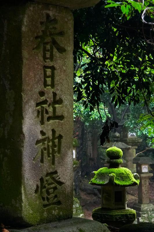 Kasuga Taisha Lamp...  I really like this photo.