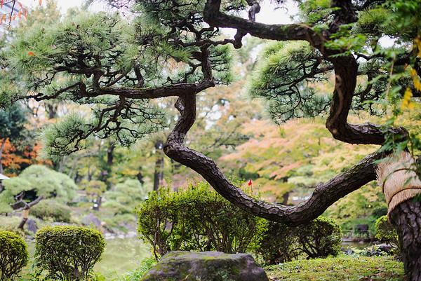 Hibiya Park Tokyo