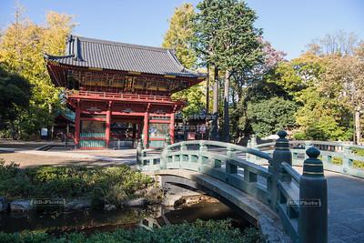 Nezu-jinja Shrine in Tokyo, Japan