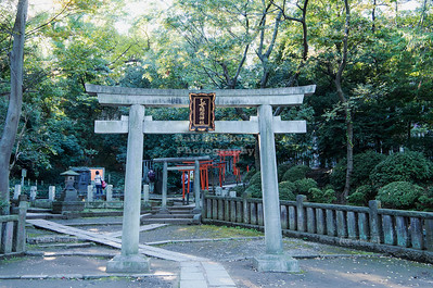 Torii Gates at Nezu Shrine, Tokyo