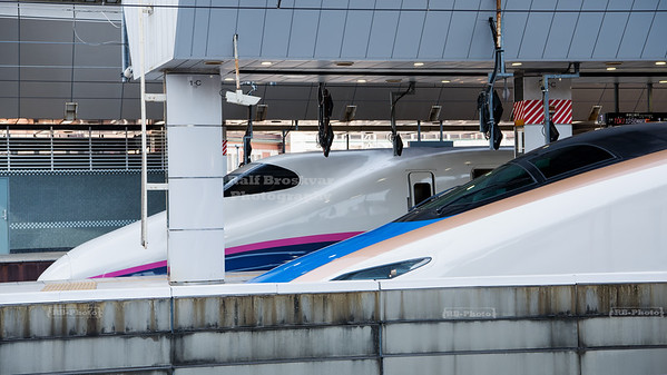 Bullet trains at Tokyo Station