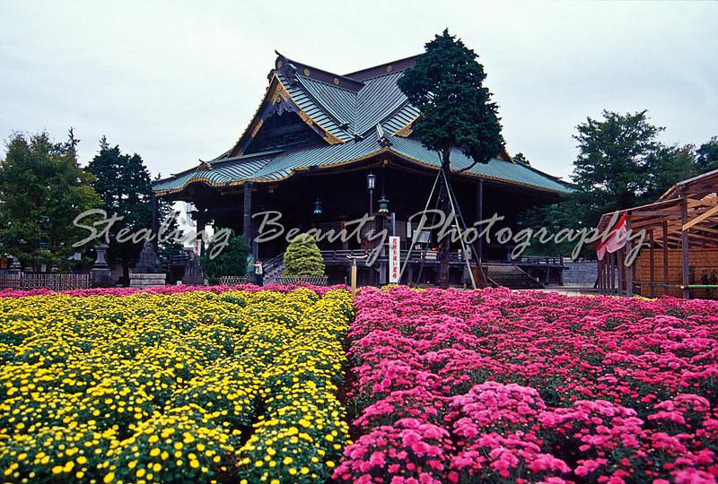 Temple flowerbeds