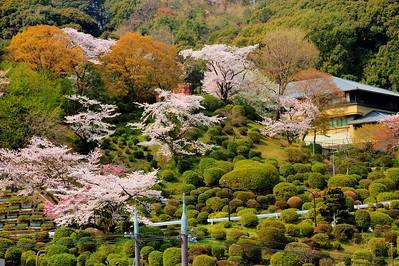 Higashiyama hillside view