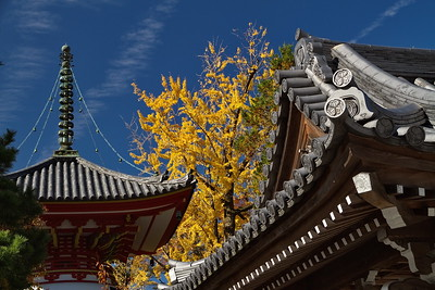 Chion-in_0319