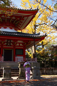 Chion-in_1574