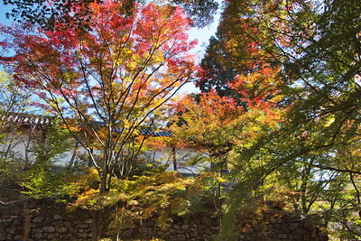 Autumn-yama