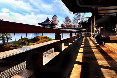 kyoto minami