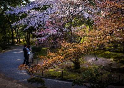 Kanazawa & around