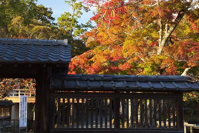 daikakuji_1359