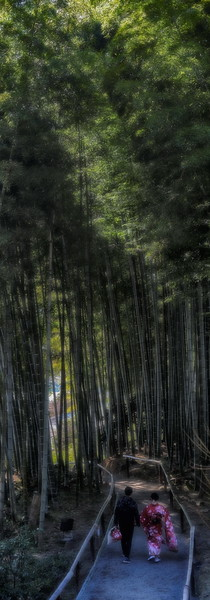 Bamboo Cathedral