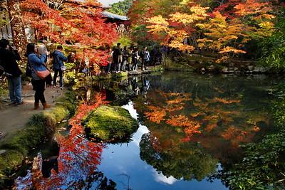 kyoto nanten
