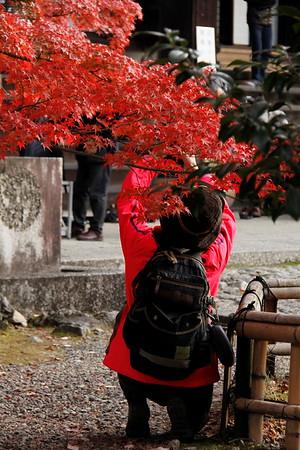 hidden higashiyama-2