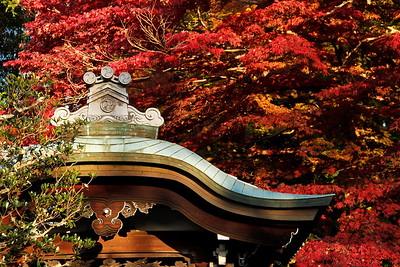 hidden-higashiyama
