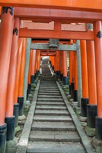 Kyoto-9