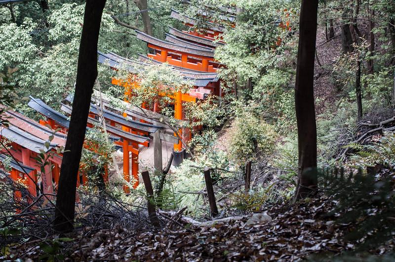 Kyoto-10