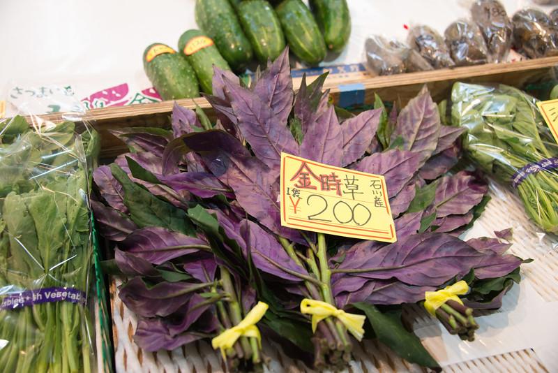 Omicho Market Kanazawa-9415