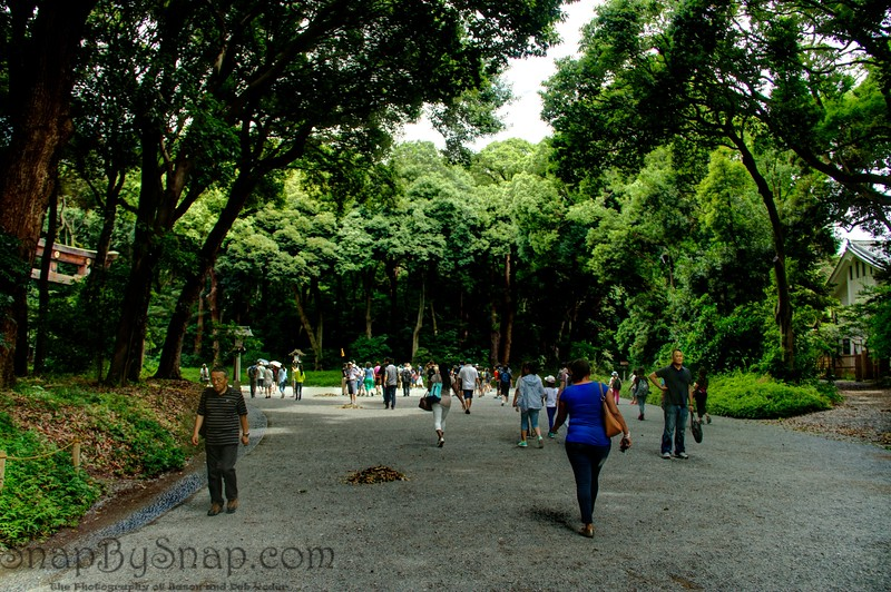 Grounds of Meiji Jingu Shrine